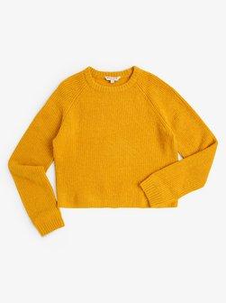 Pullover & Strickjacken für Mädchen online kaufen   VAN GRAAF