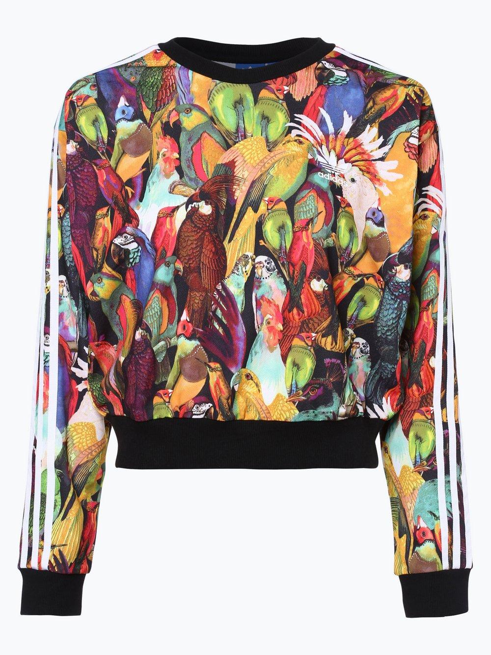 adidas Originals Damen Sweatshirt Passaredo online kaufen